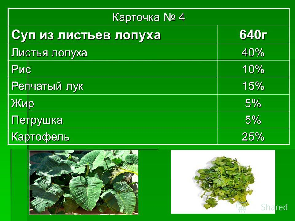 Карточка 4 Суп из листьев лопуха 640г Листья лопуха 40% Рис10% Репчатый лук 15% Жир5% Петрушка5% Картофель25%