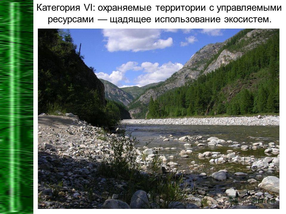 Категория VI: охраняемые территории с управляемыми ресурсами щадящее использование экосистем.
