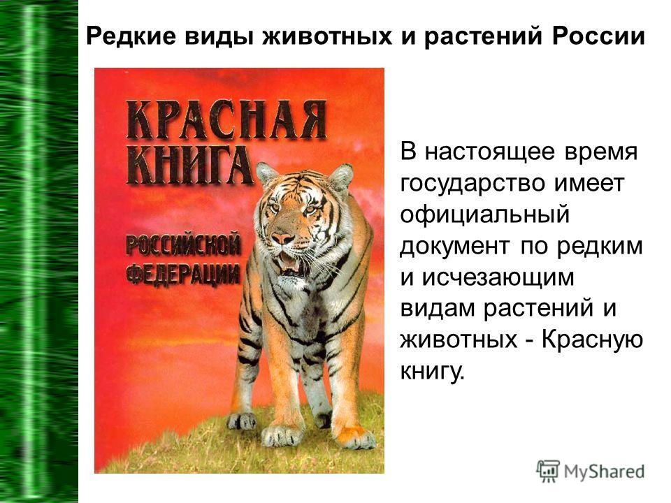 Редкие виды животных и растений России В настоящее время государство имеет официальный документ по редким и исчезающим видам растений и животных - Красную книгу.
