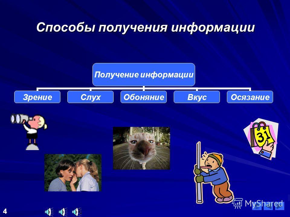 Формы информации 3 Текстовая Графическая Фотографии Мимика, жесты Числовая Звуковая