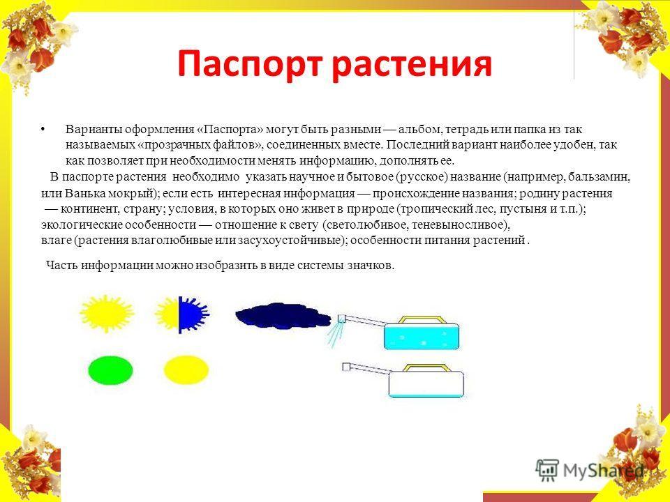 FokinaLida.75@mail.ru Варианты оформления «Паспорта» могут быть разными альбом, тетрадь или папка из так называемых «прозрачных файлов», соединенных вместе. Последний вариант наиболее удобен, так как позволяет при необходимости менять информацию, доп