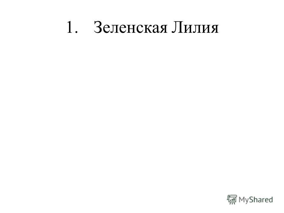 1.Зеленская Лилия