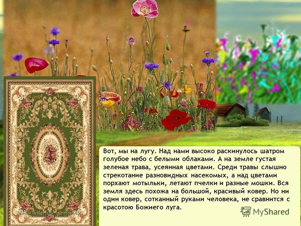 Всё это и нас самих сотворил (создал) Бог Мы видим мир Божий и понимаем, как он красиво и мудро устроен.