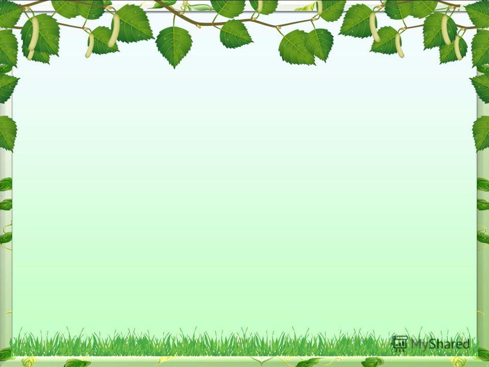 Картинки лес для фотошопа
