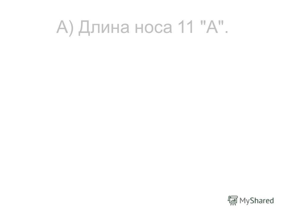 А) Длина носа 11 А.
