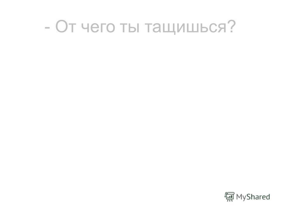 - От чего ты тащишься?