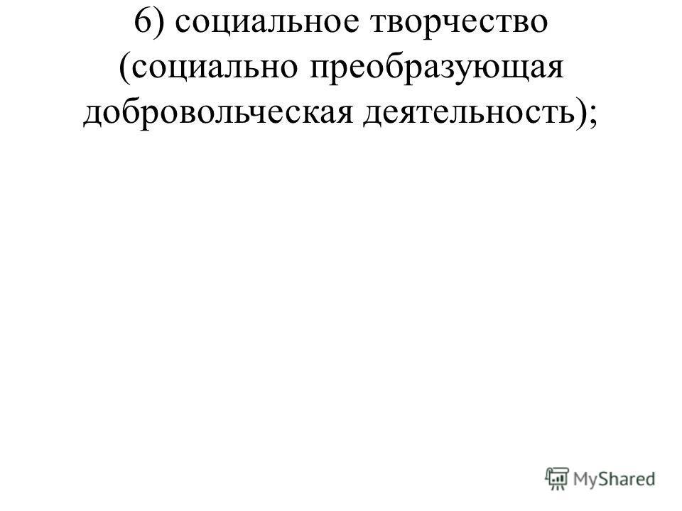6) социальное творчество (социально преобразующая добровольческая деятельность);