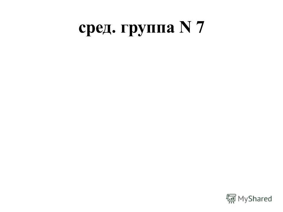 сред. группа N 7