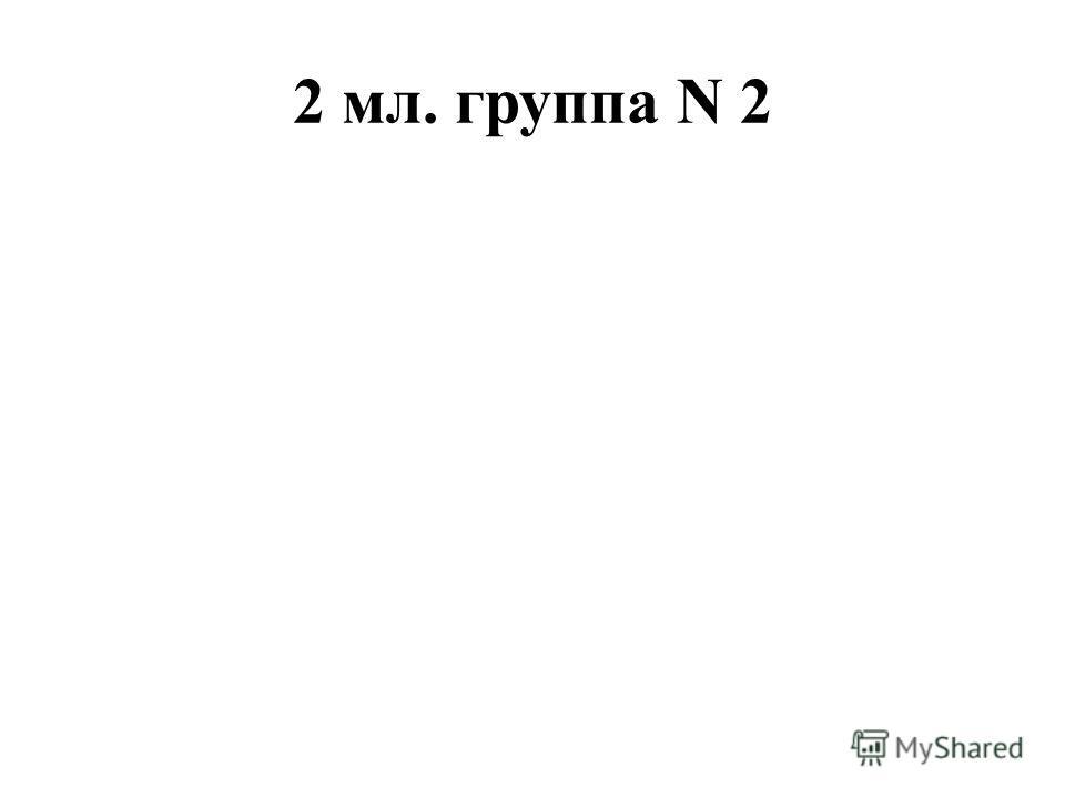 2 мл. группа N 2