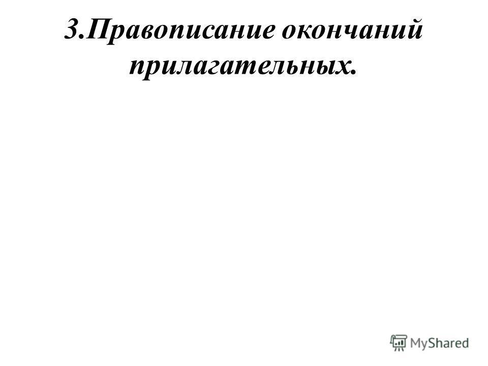 3.Правописание окончаний прилагательных.