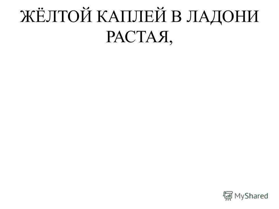 ЖЁЛТОЙ КАПЛЕЙ В ЛАДОНИ РАСТАЯ,