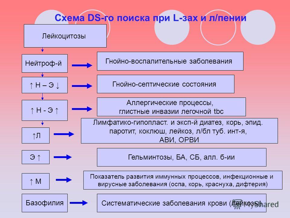 Схема DS-го поиска при L-зах и л/пении Лейкоцитозы Нейтроф-й Н – Э Н - Э Л Э М Базофилия Гнойно-воспалительные заболевания Гнойно-септические состояния Аллергические процессы, глистные инвазии легочной tbc Лимфатико-гипопласт. и эксп-й диатез, корь,