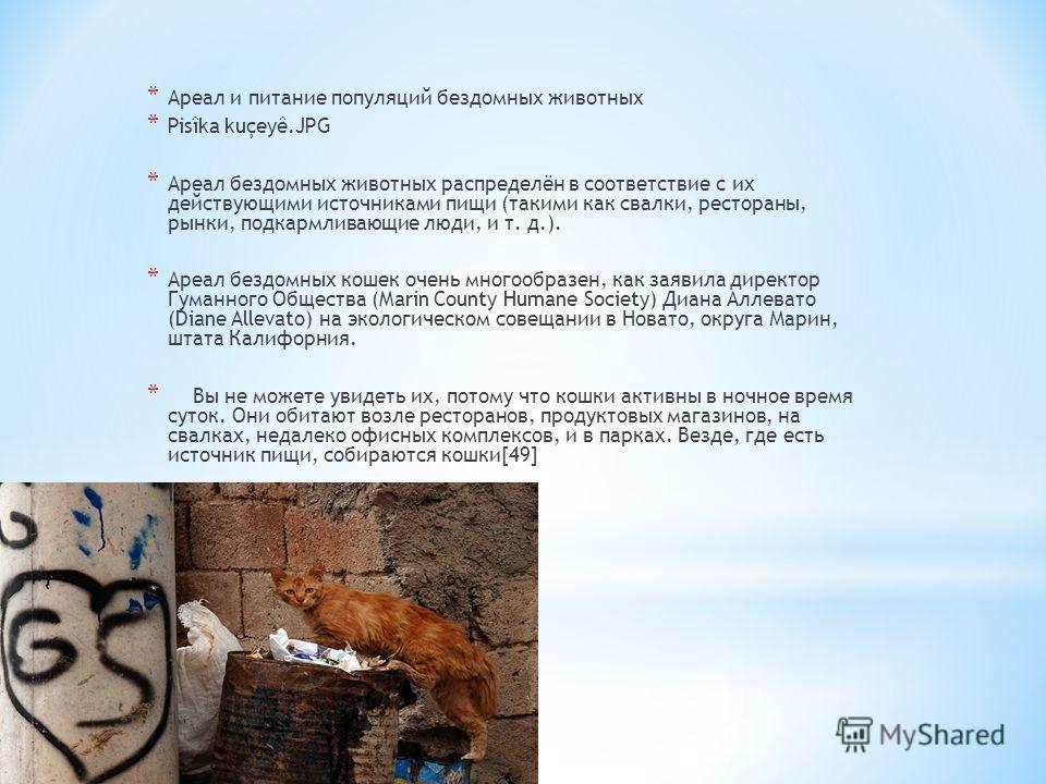 * Ареал и питание популяций бездомных животных * Pisîka kuçeyê.JPG * Ареал бездомных животных распределён в соответствие с их действующими источниками пищи (такими как свалки, рестораны, рынки, подкармливающие люди, и т. д.). * Ареал бездомных кошек