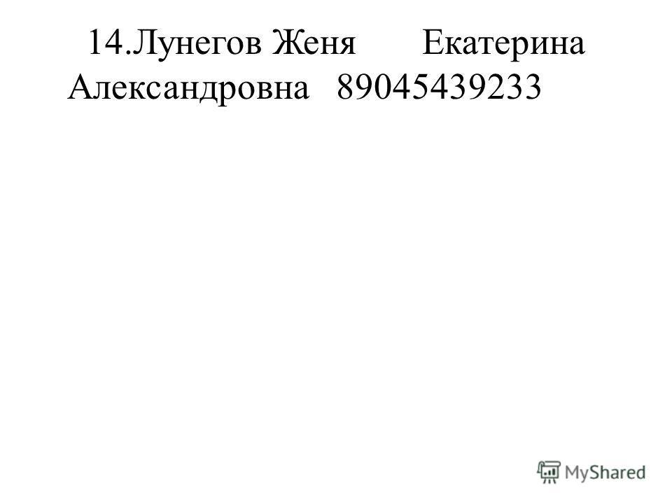 14.Лунегов ЖеняЕкатерина Александровна89045439233