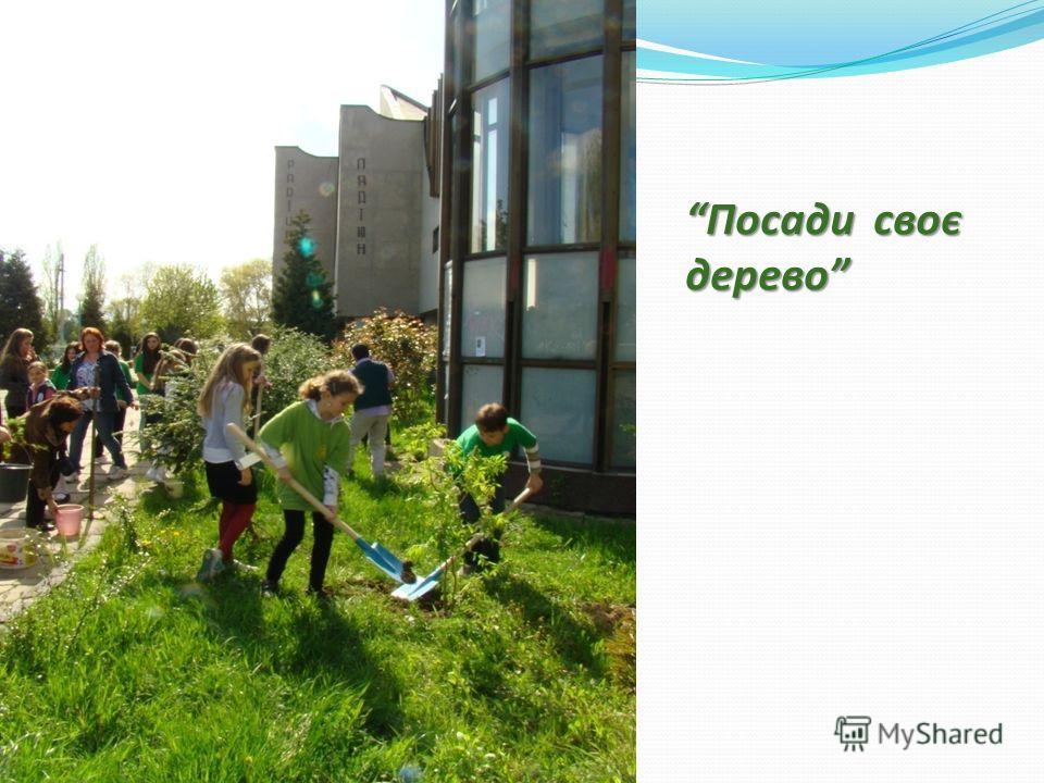 Посади своє дерево