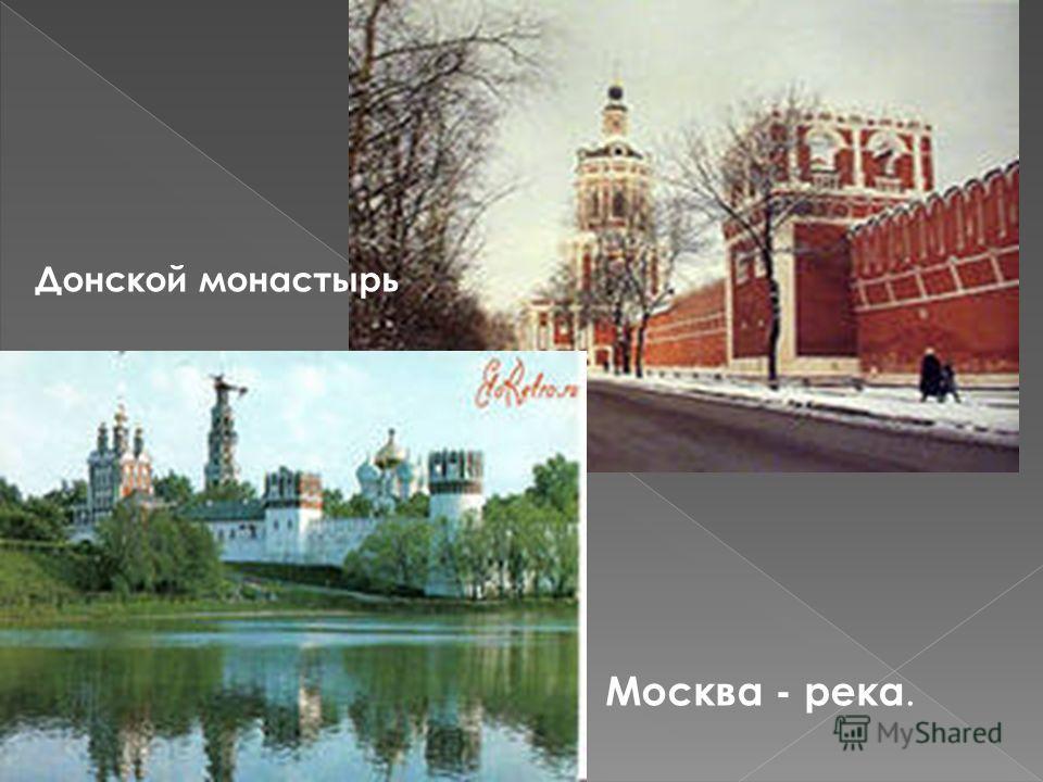 Донской монастырь Москва - река.