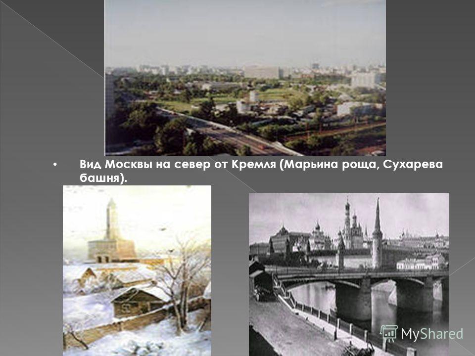 Вид Москвы на север от Кремля (Марьина роща, Сухарева башня).