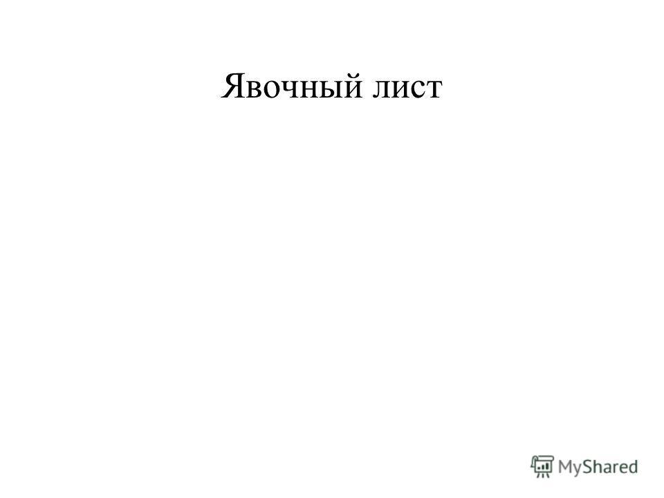 Явочный лист