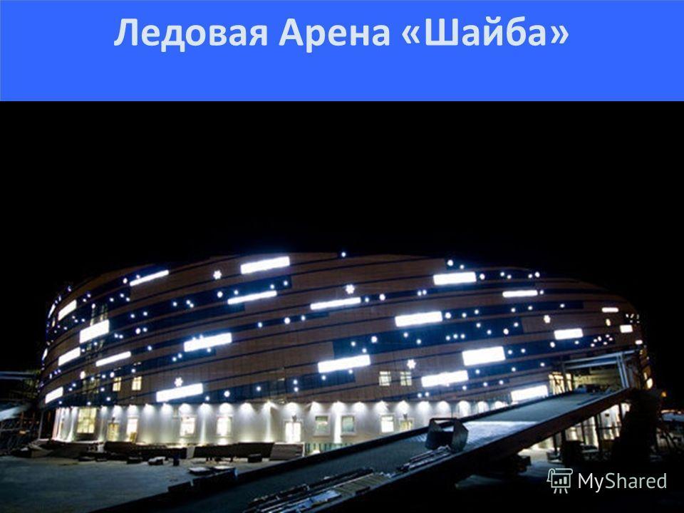 Арена ледовая арена шайба