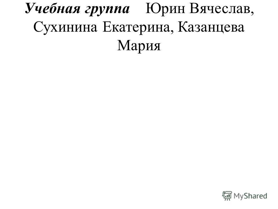 Учебная группа Юрин Вячеслав, Сухинина Екатерина, Казанцева Мария