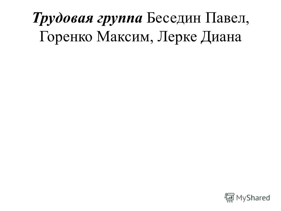 Трудовая группа Беседин Павел, Горенко Максим, Лерке Диана