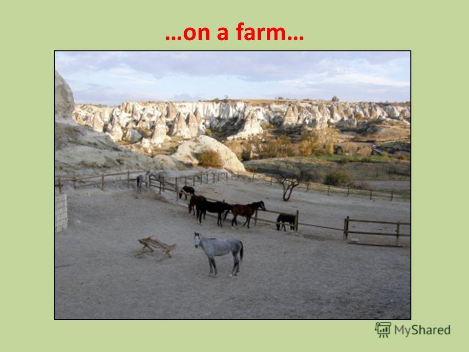 …on a farm…