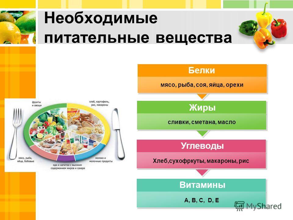 Необходимые питательные вещества мясо, рыба, соя, яйца, орехи сливки, сметана, масло Хлеб,сухофркуты, макароны, рис А, В, С, D, E Белки Жиры Углеводы Витамины