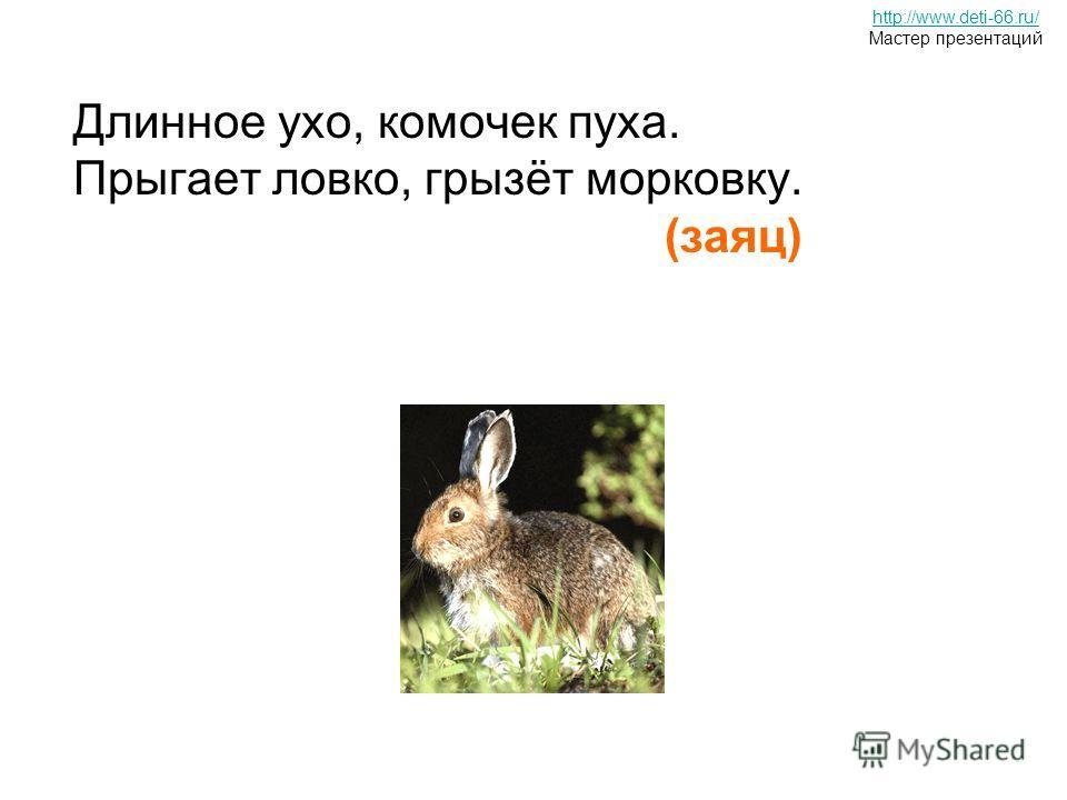 Длинное ухо, комочек пуха. Прыгает ловко, грызёт морковку. (заяц) он известный, Сторож он чудесный Молча он, а не крича, В дом не пустит без ключа. http://www.deti-66.ru/ Мастер презентаций