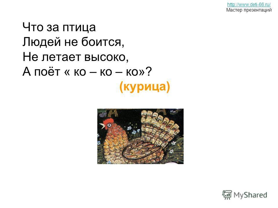 Что за птица Людей не боится, Не летает высоко, А поёт « ко – ко – ко»? (курица) http://www.deti-66.ru/ Мастер презентаций