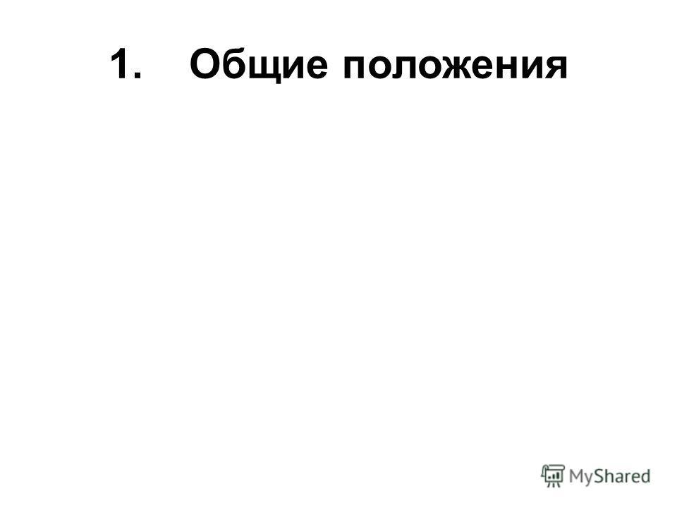 1. Общие положения