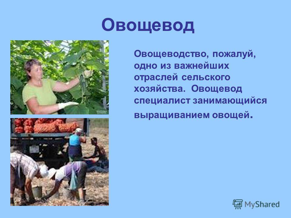 Овощевод Овощеводство, пожалуй, одно из важнейших отраслей сельского хозяйства. Овощевод специалист занимающийся выращиванием овощей.