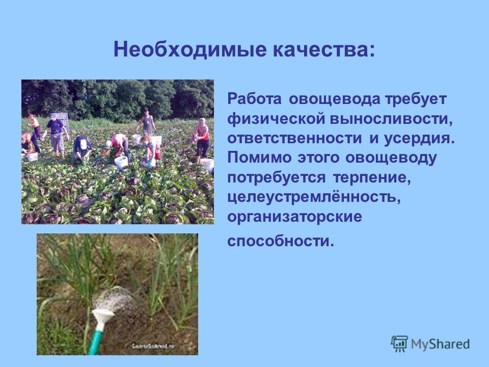 Необходимые качества: Работа овощевода требует физической выносливости, ответственности и усердия. Помимо этого овощеводу потребуется терпение, целеустремлённость, организаторские способности.