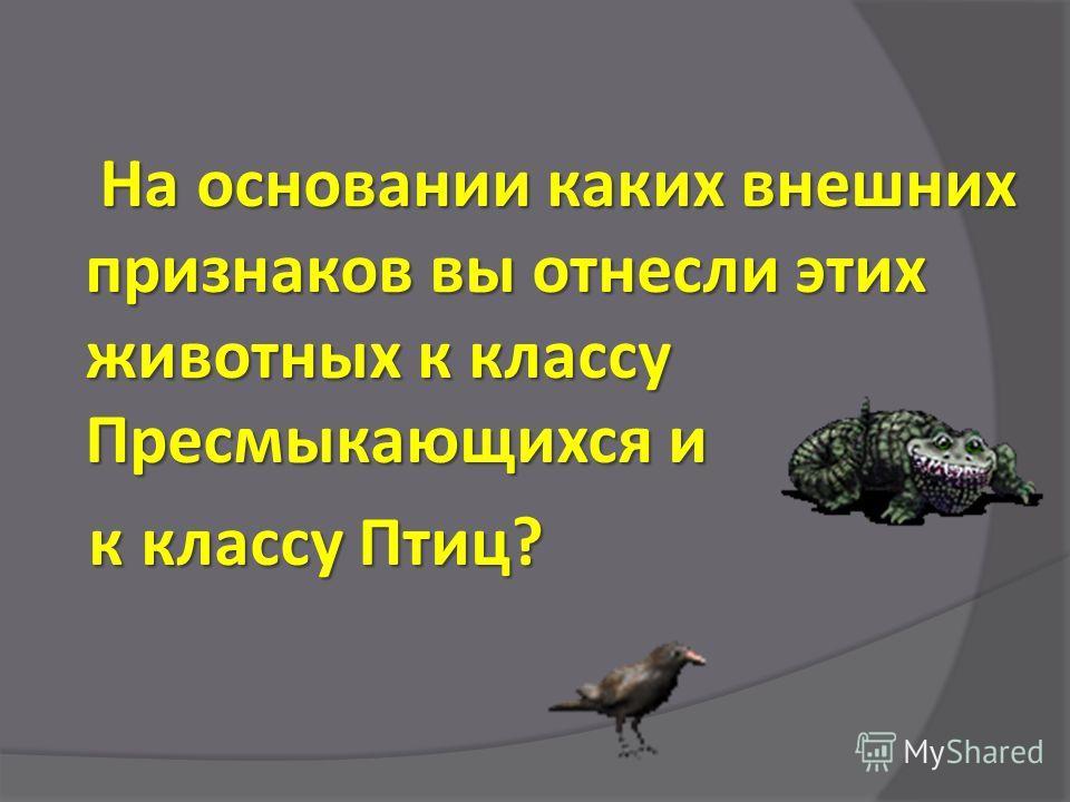 На основании каких внешних признаков вы отнесли этих животных к классу Пресмыкающихся и к классу Птиц? к классу Птиц?