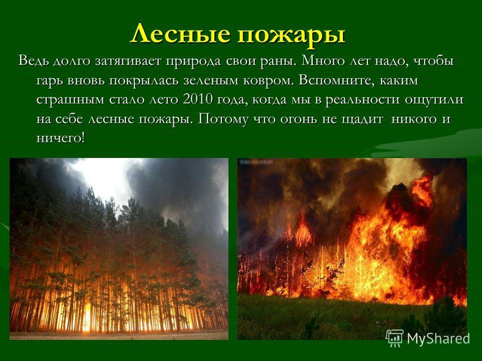Лесные пожары Ведь долго затягивает природа свои раны. Много лет надо, чтобы гарь вновь покрылась зеленым ковром. Вспомните, каким страшным стало лето 2010 года, когда мы в реальности ощутили на себе лесные пожары. Потому что огонь не щадит никого и