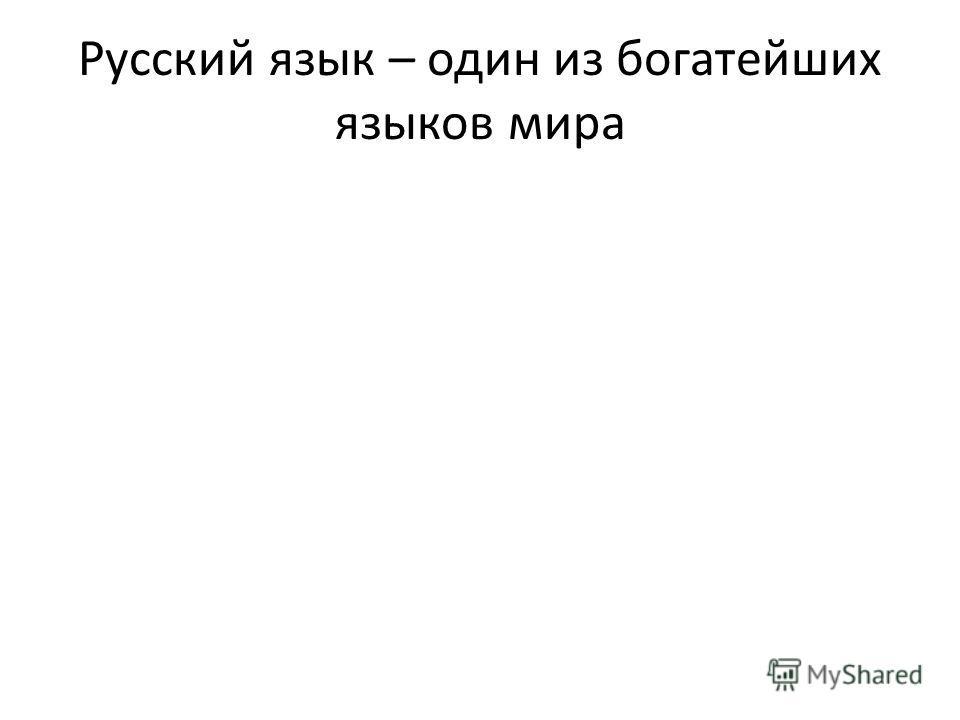 Русский язык – один из богатейших языков мира