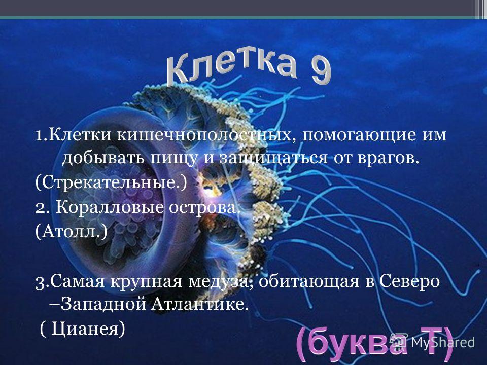 1.Клетки кишечнополостных, помогающие им добывать пищу и защищаться от врагов. (Стрекательные.) 2. Коралловые острова. (Атолл.) 3.Самая крупная медуза, обитающая в Северо –Западной Атлантике. ( Цианея)