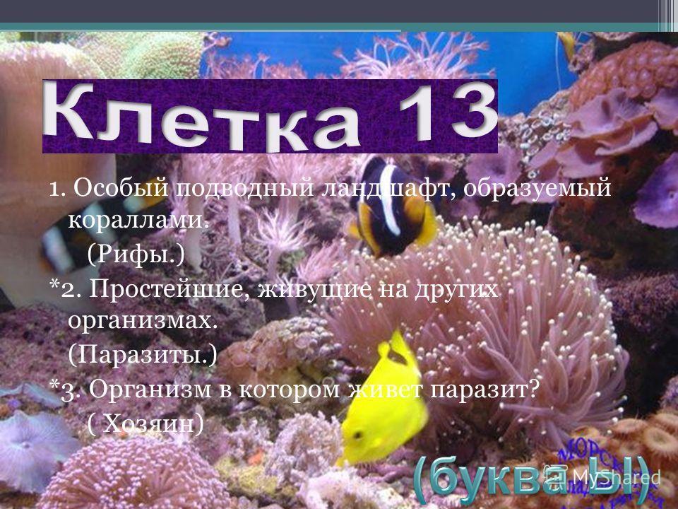 1. Особый подводный ландшафт, образуемый кораллами. (Рифы.) *2. Простейшие, живущие на других организмах. (Паразиты.) *3. Организм в котором живет паразит? ( Хозяин)