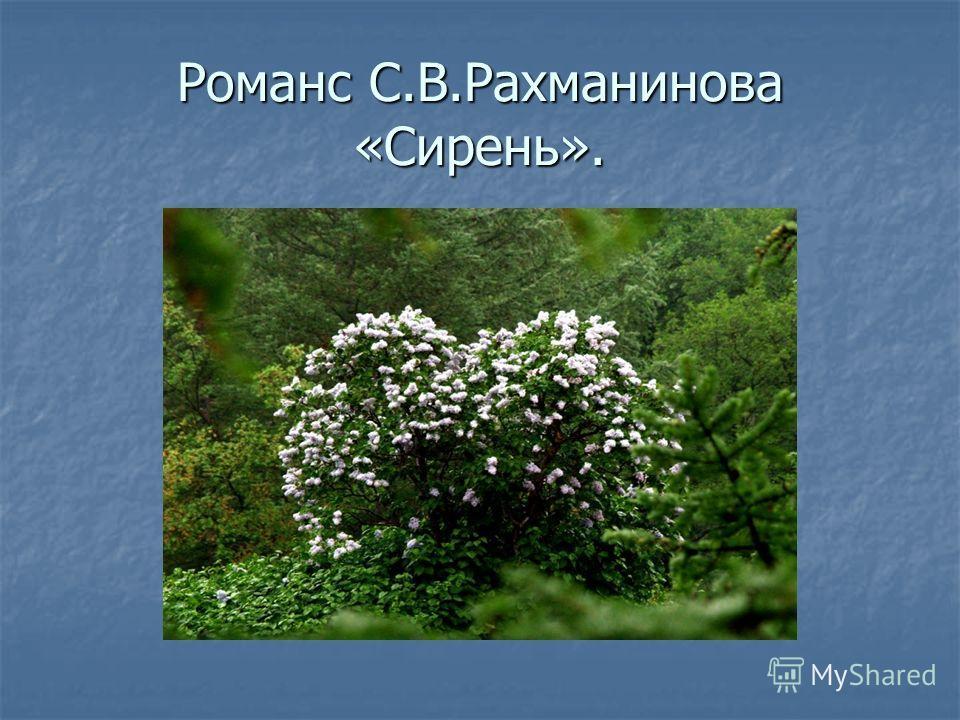 Романс С.В.Рахманинова «Сирень».