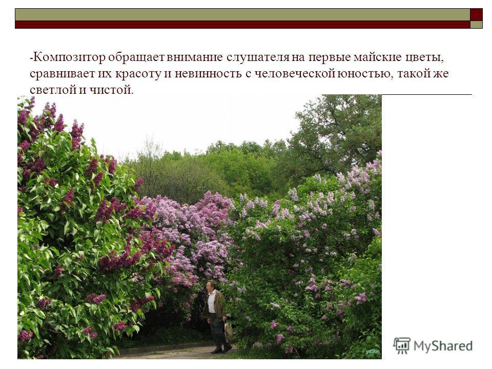 - Композитор обращает внимание слушателя на первые майские цветы, сравнивает их красоту и невинность с человеческой юностью, такой же светлой и чистой.