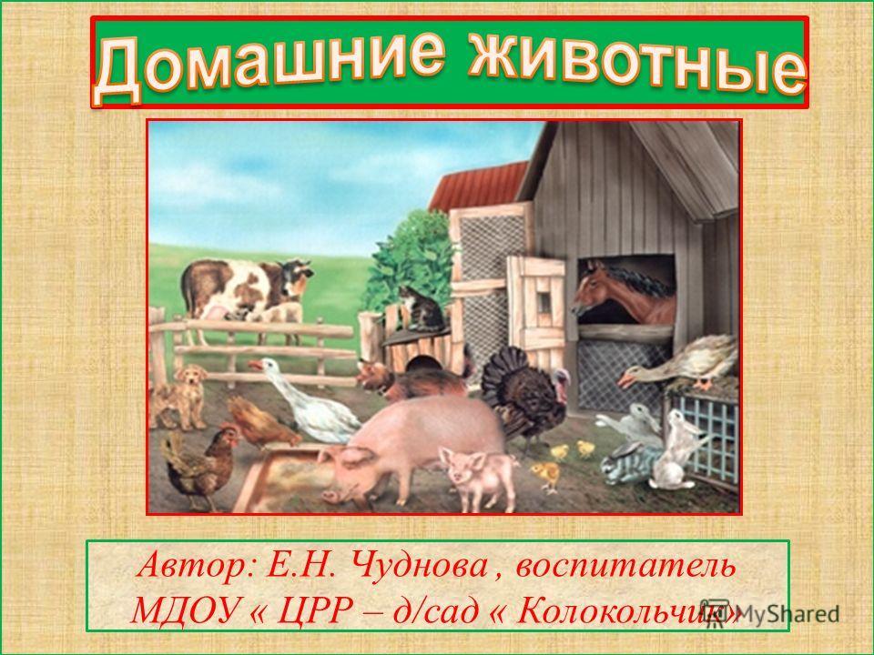 Автор: Е.Н. Чуднова, воспитатель МДОУ « ЦРР – д/сад « Колокольчик»