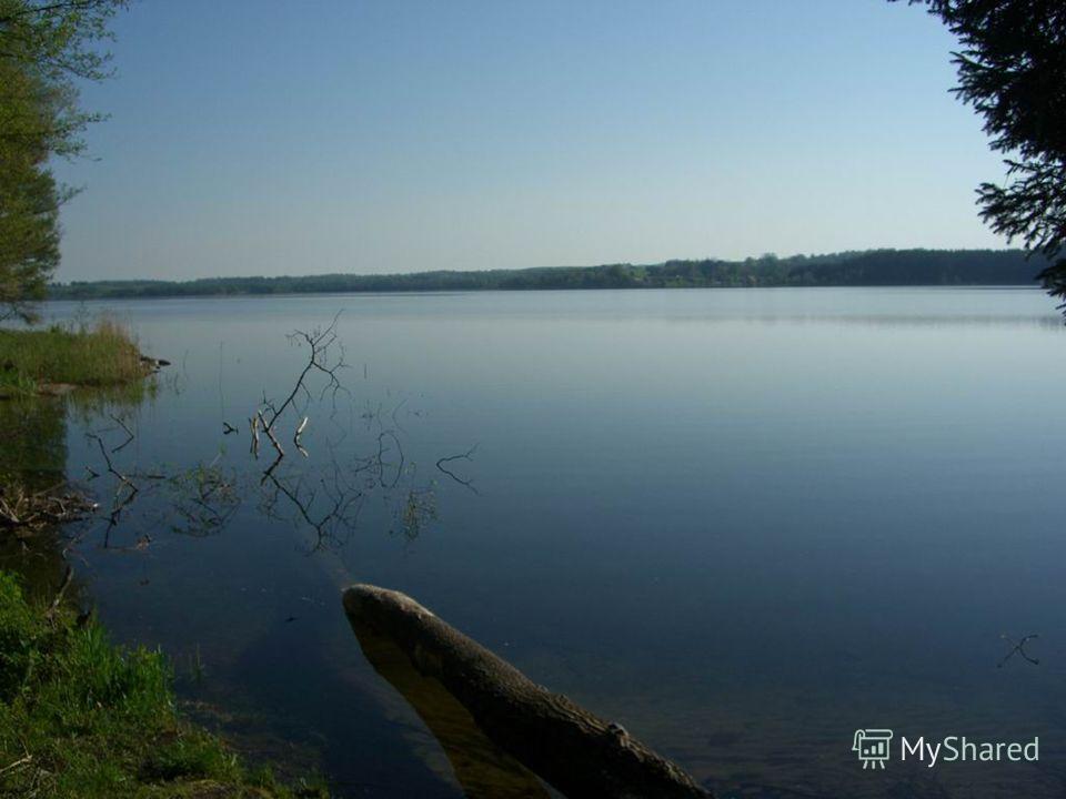 География и происхождение озера Виштынец Площадь водного зеркала озера составляет около 18 квадратных километров, максимальная глубина 54 метра. Объём вод составляет 285 миллионов кубометров. Абсолютная высота над уровнем моря 172,4 метра. Возраст 20