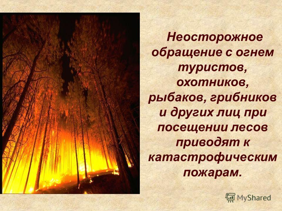 Неосторожное обращение с огнем туристов, охотников, рыбаков, грибников и других лиц при посещении лесов приводят к катастрофическим пожарам.
