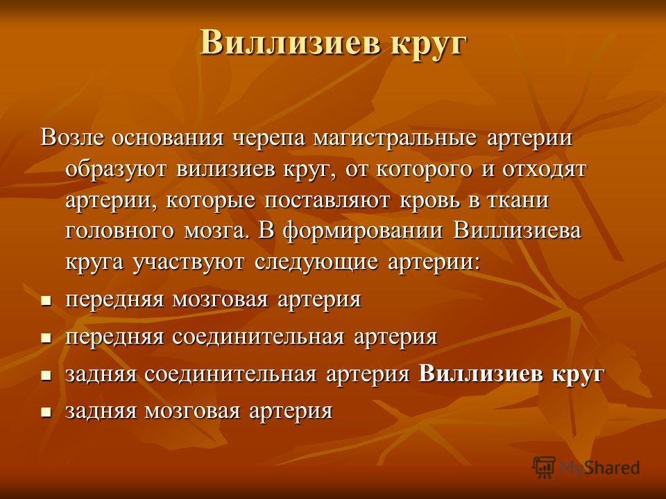 Круг Виллизиев фото
