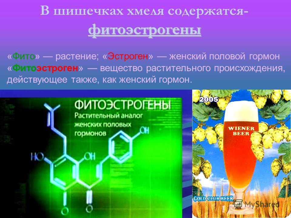 «Фито» растение; «Эстроген» женский половой гормон «Фитоэстроген» вещество растительного происхождения, действующее также, как женский гормон. фитоэстрогены В шишечках хмеля содержатся- фитоэстрогены