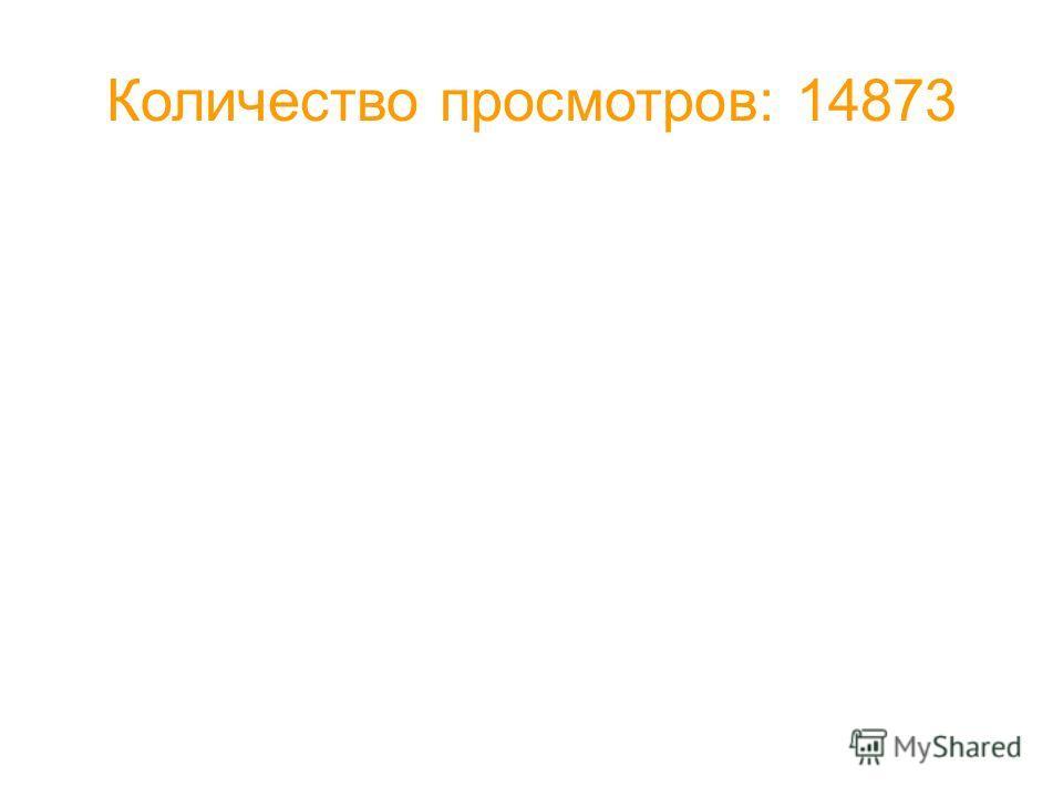 Количество просмотров: 14873