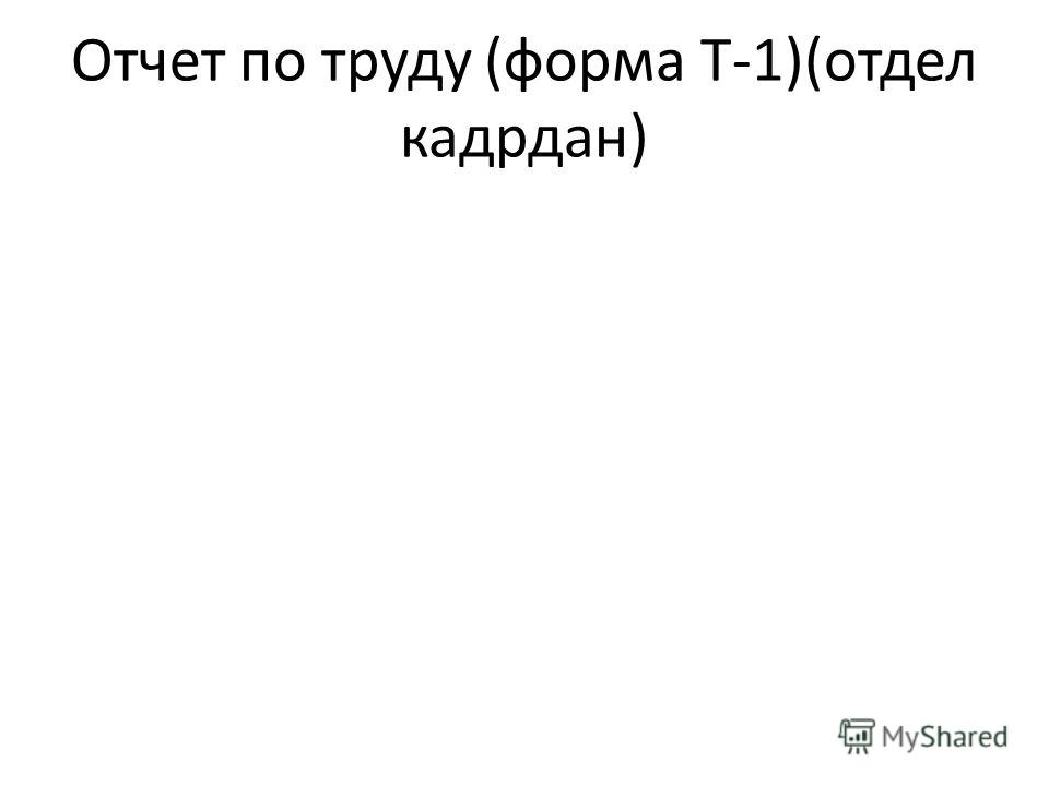 Отчет по труду (форма Т-1)(отдел кадрдан)