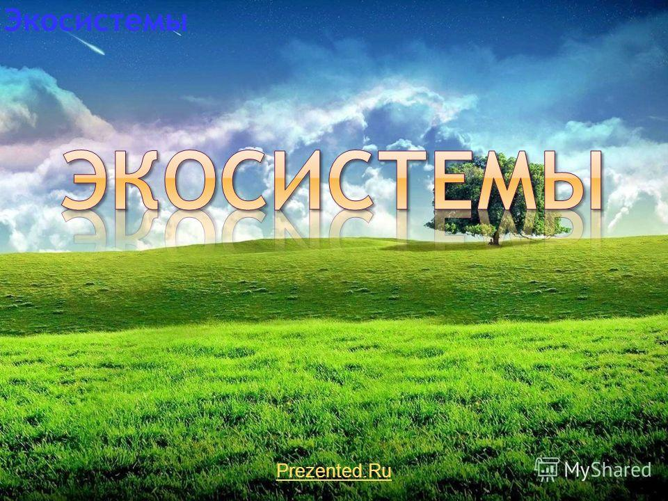 Prezented.Ru