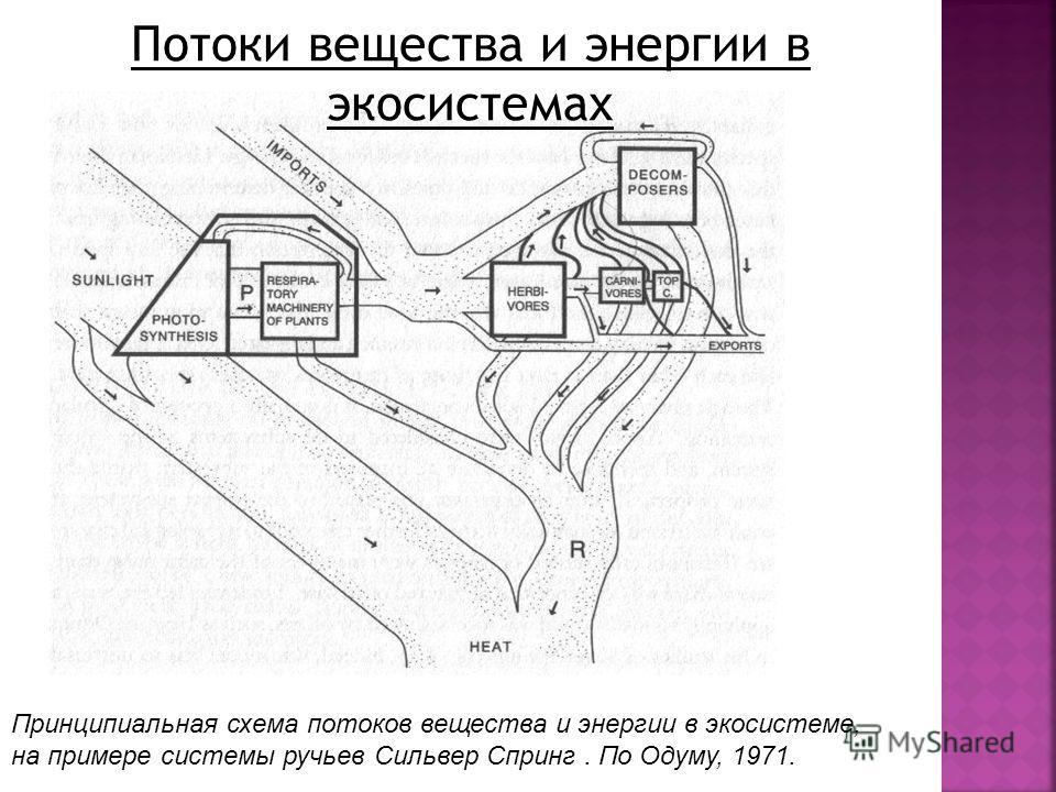 Принципиальная схема потоков вещества и энергии в экосистеме, на примере системы ручьев Сильвер Спринг. По Одуму, 1971.