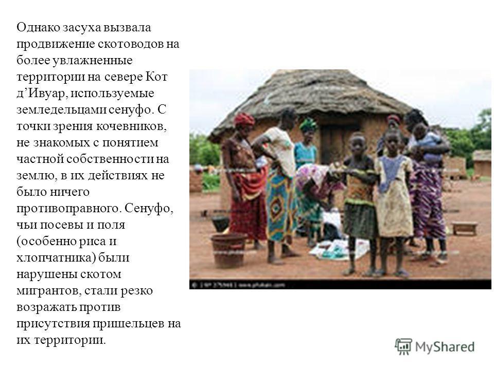 Однако засуха вызвала продвижение скотоводов на более увлажненные территории на севере Кот дИвуар, используемые земледельцами сенуфо. С точки зрения кочевников, не знакомых с понятием частной собственности на землю, в их действиях не было ничего прот
