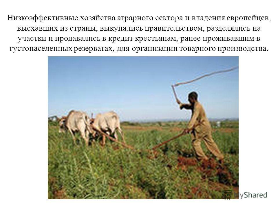 Низкоэффективные хозяйства аграрного сектора и владения европейцев, выехавших из страны, выкупались правительством, разделялись на участки и продавались в кредит крестьянам, ранее проживавшим в густонаселенных резерватах, для организации товарного пр